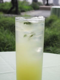 The Basil Lime Cooler