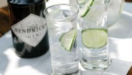 gin and tonic featured image