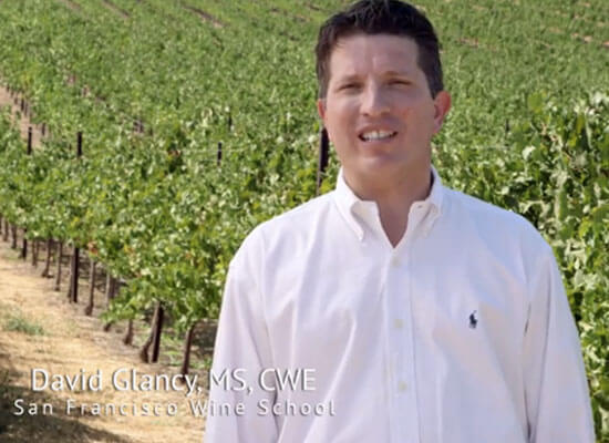 New Video Series on California Wine Regions in Celebration of California Wine Month