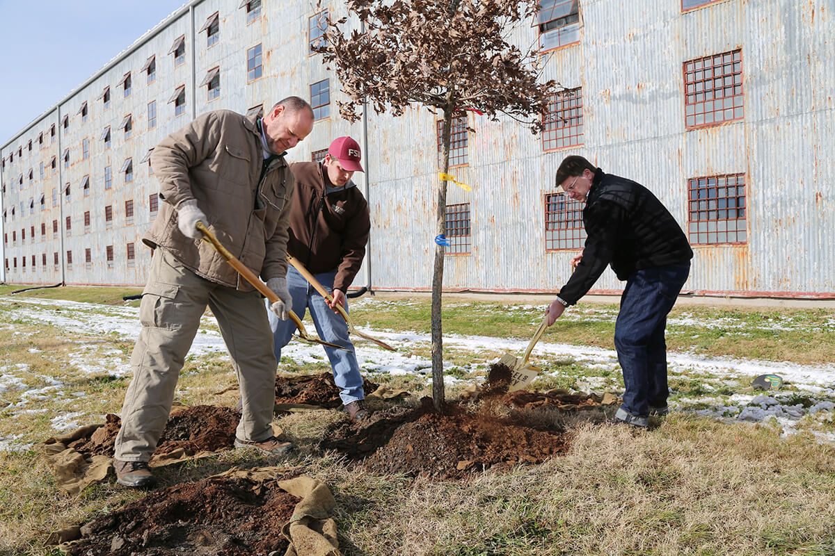 Kevin Curtis, Kyle Henderson and Wes Henderson of Angel's Envy plant white oak trees at the brand's new rack house in Louisville, Kentucky