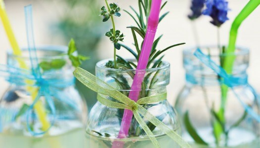 Herbs, Your Cocktail's Best Friend