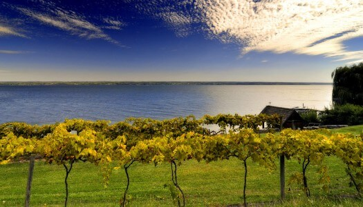 May is Finger Lakes Wine Month