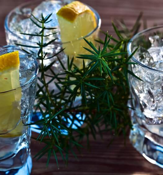 Batch Those Gin Cocktails!