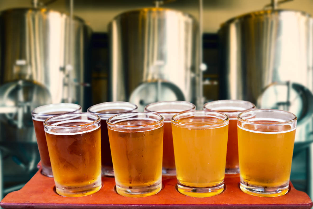 Craft Beer Sips for the Sunny Season