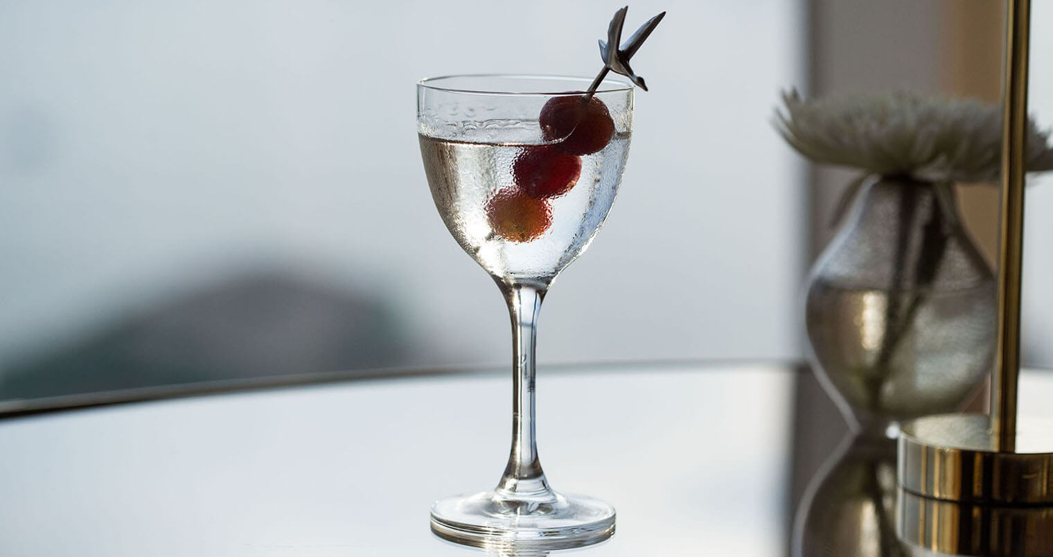 Celebrate National Martini Day with Grey Goose - June 19th, 2015