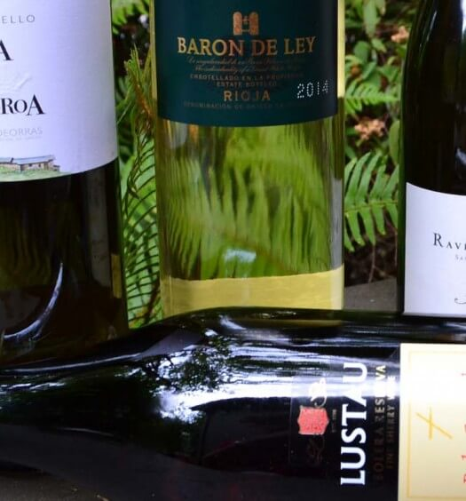 4 Spanish White Wines for Summer Sipping