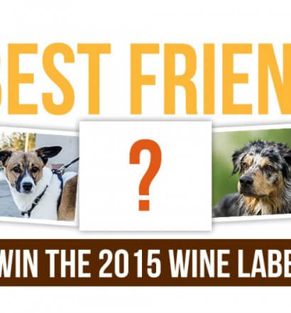 My Best Friend Rescue Red Wine Label Contest