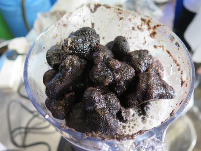 Truffles Used in Black Moth Truffle Vodka