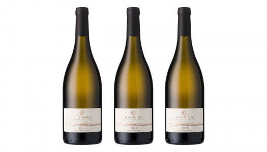 Terre Brûlée Joins Cape Classics' Portfolio, Linking France and South Africa