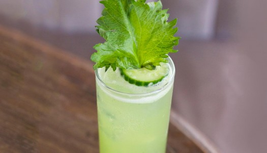 Crafting Cocktails with Shiso