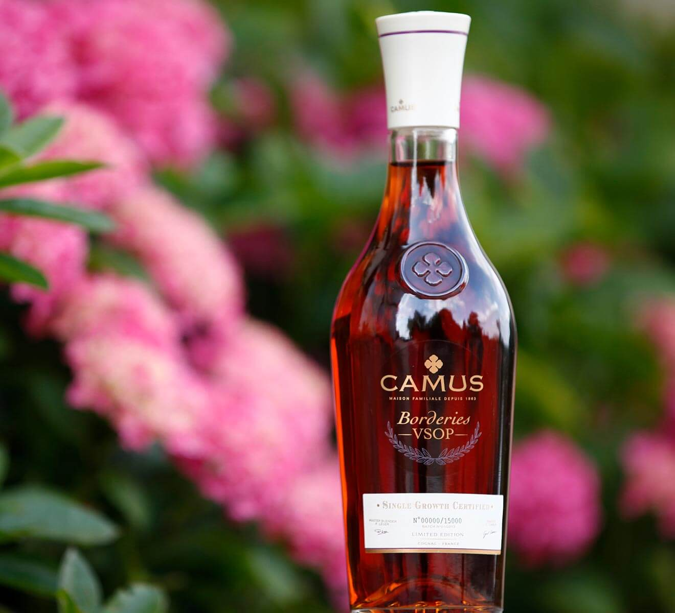 Camus Borderies VSOP bottle with garden background