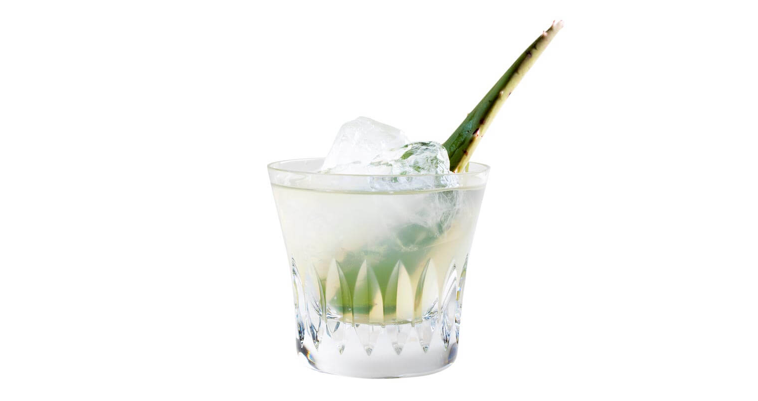 Must Mix: Aloe Vera Margarita, featured image