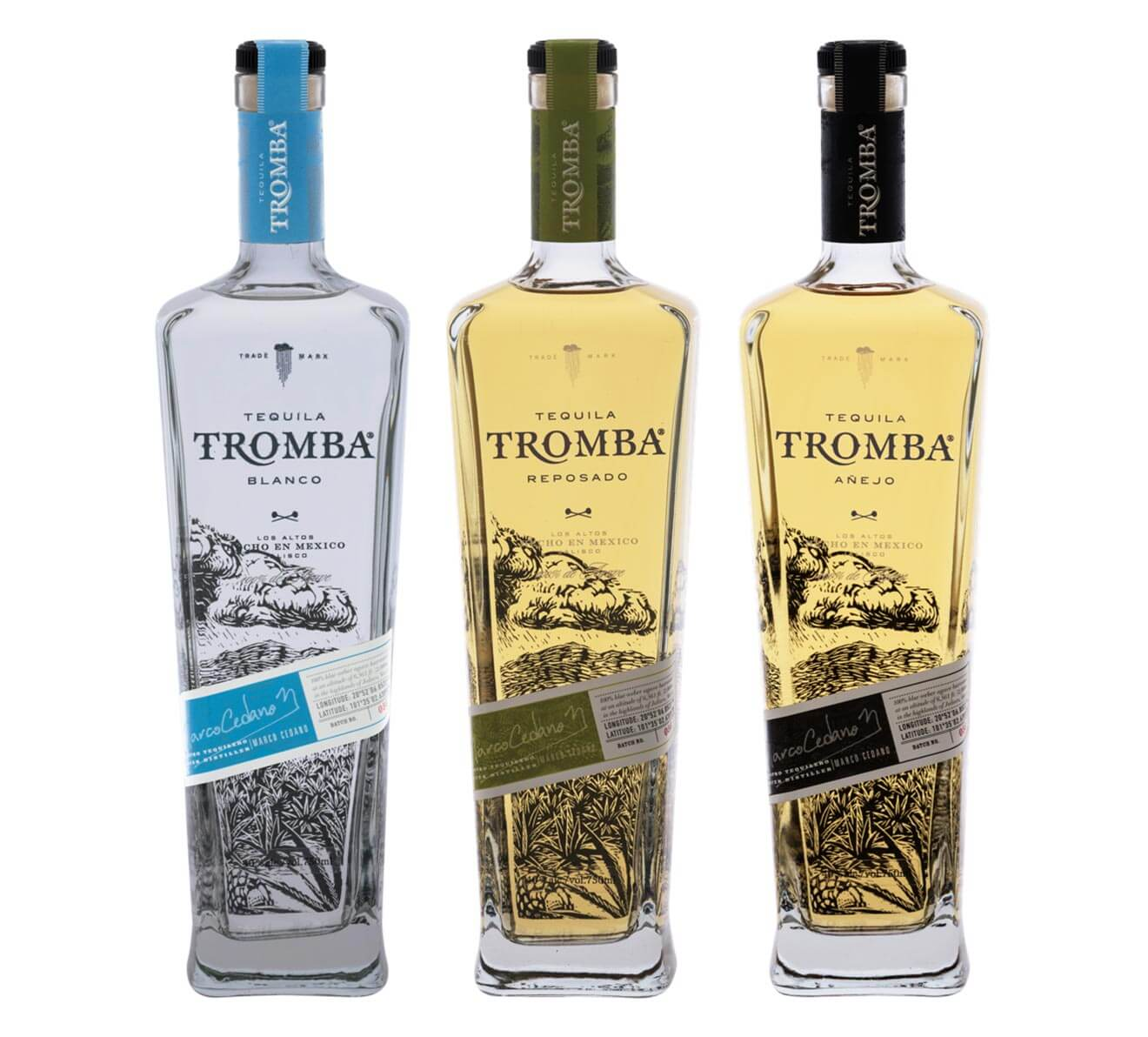 Tromba Tequila bottle varieities on white