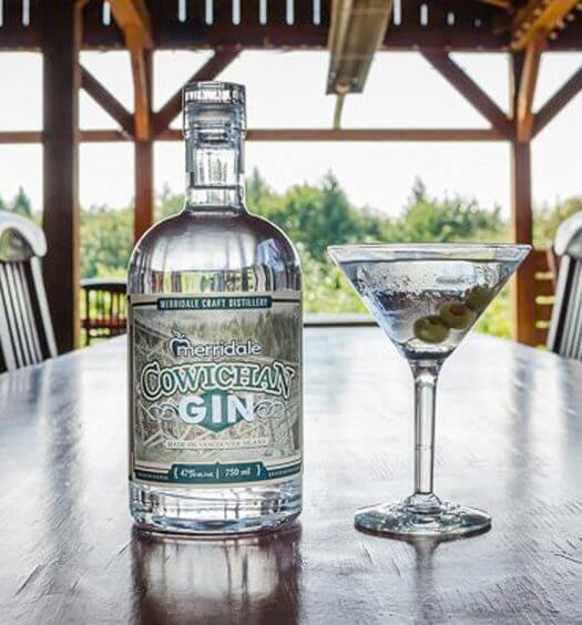 Gin Gone Wild on Vancouver Island, featured image