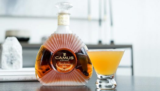 Chilled Drink of the Week: Camus Mango Sidecar