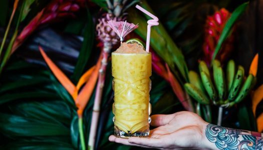 Yellowbelly is Bringing the Tropical Vibes to St. Louis