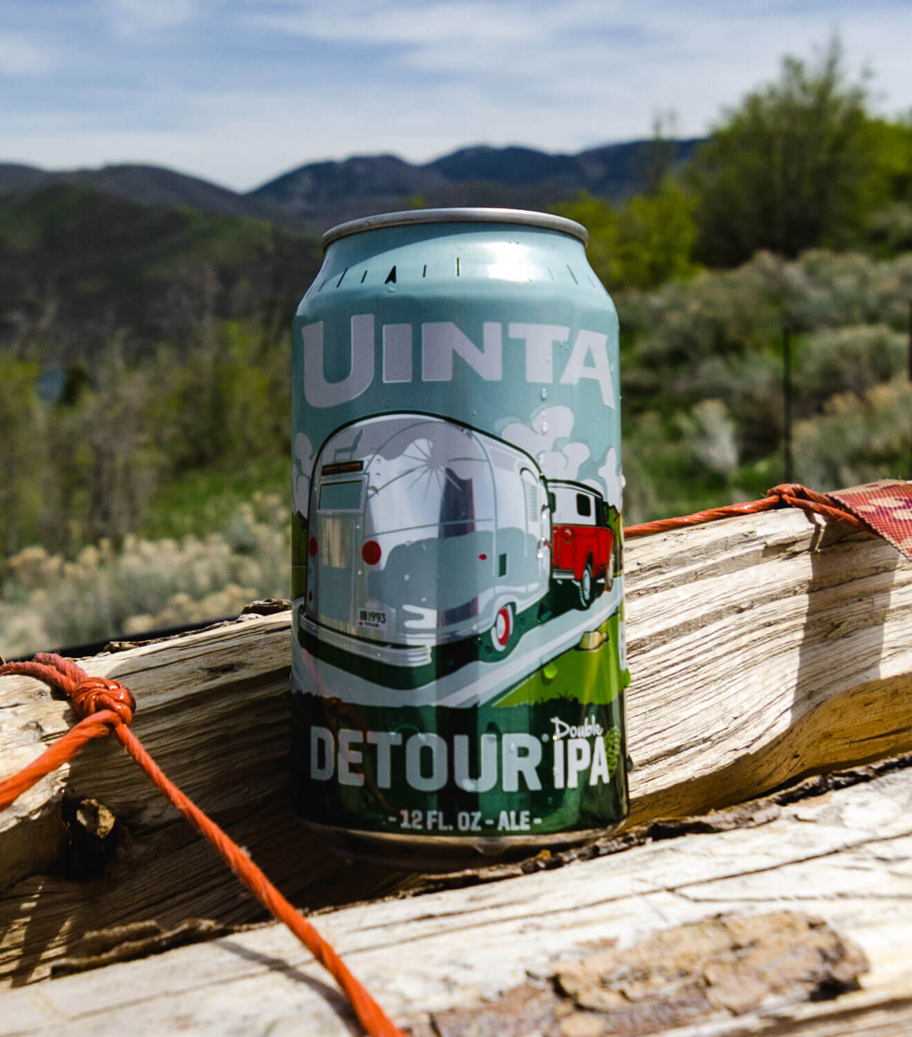 Uinta Brewing Detour Double IPA, can on woodsy background