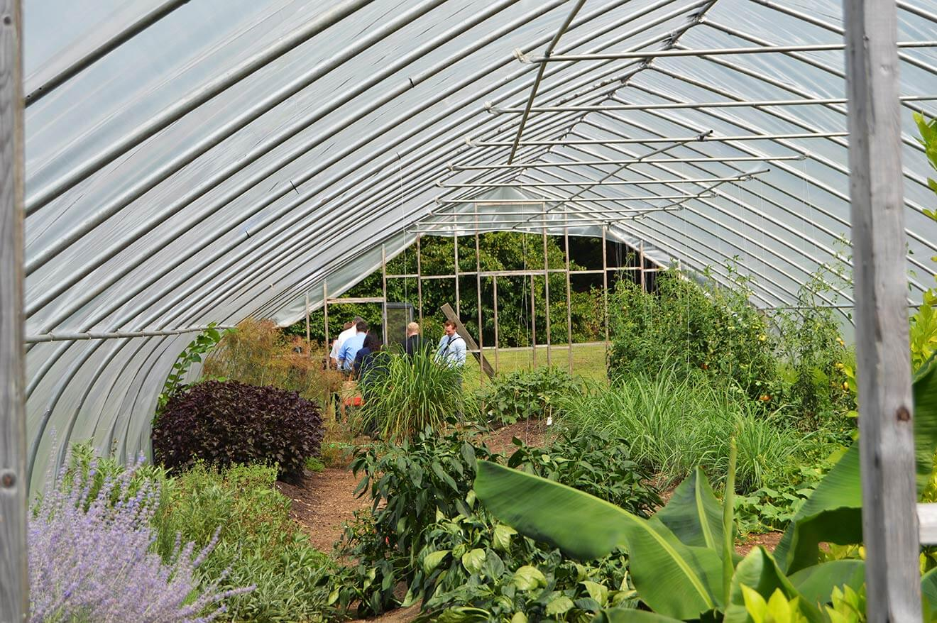 Berkshire Mountain greenhouse