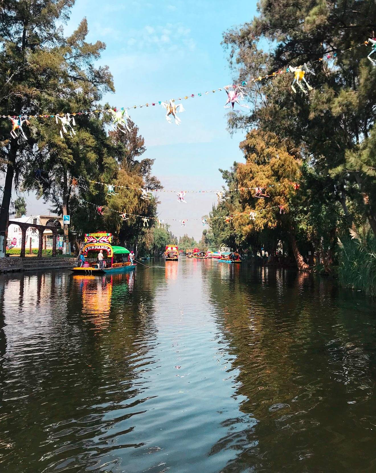 Xochimilco canal view with trees