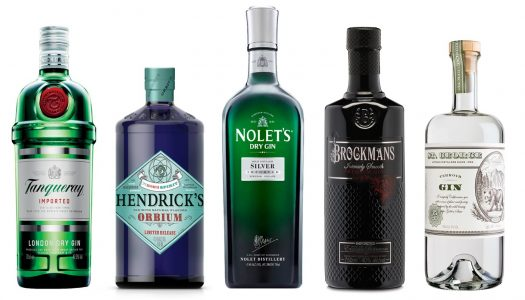 9 Gins That Mix a Great Martini