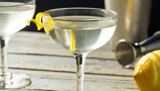 How To Make a Classic Gin Martini