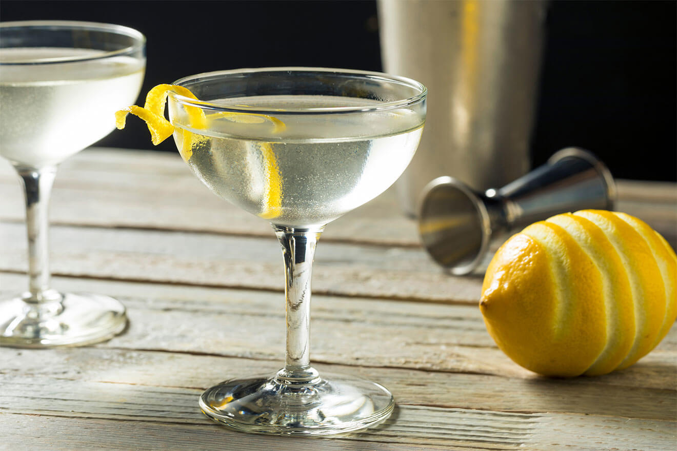 Perfect Gin Martini, cocktail with garnish