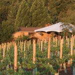 Erath Vineyard, full view featured image