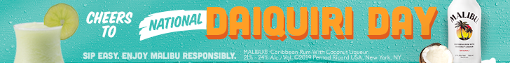 malibu rum ad, national daiquiri day