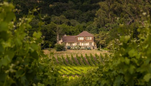The 5 Coolest Sonoma Wineries to Visit Right Now