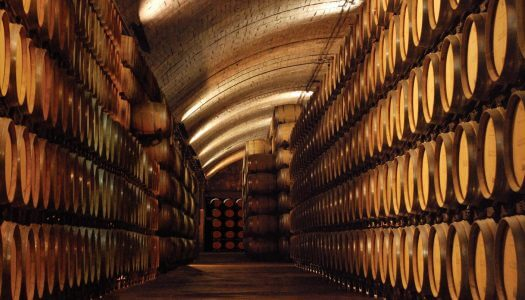 The Future Looks Bright for J. García Carrión Wines