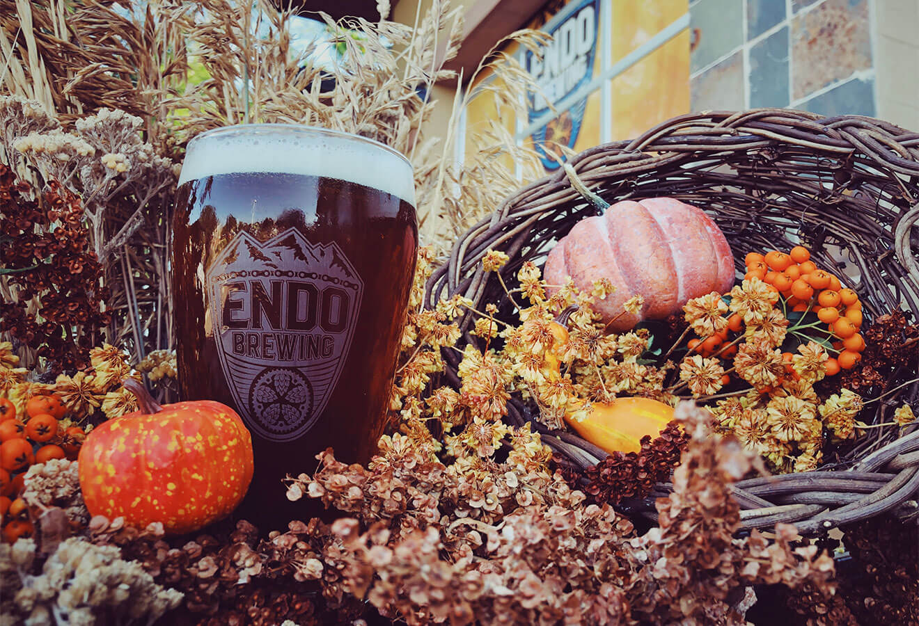 Endo Brewing No Pumpkin, Punkin Autumn Spice Ale
