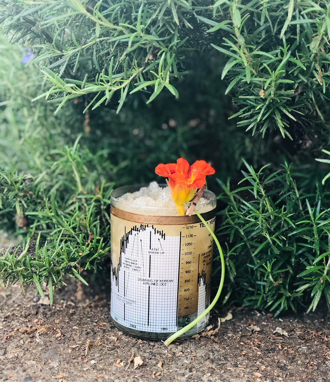 Keep Thy Youngly, rosemary cocktail