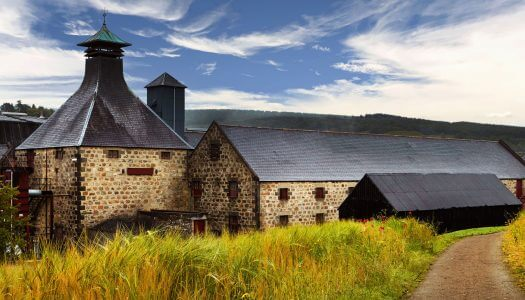 9 Best Virtual Distillery Tours