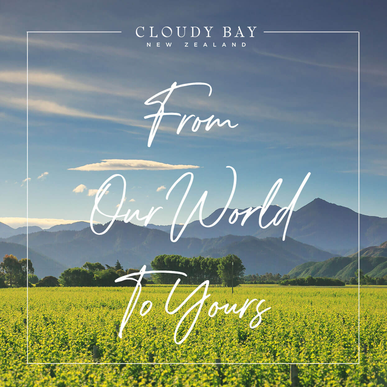 Cloudy Bay Spotify Cover
