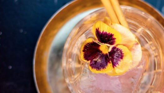 Ask a Bartender: Homemade Libations from Scratch with Steve Mazzuca