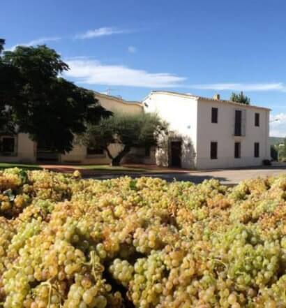 Paul Cheneau Winery featured image
