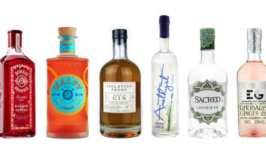 6 Flavored Gins are IN – Try these Today!