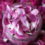 Rose Water - image by bobysbk, featured image