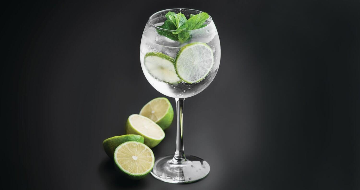 Gin and Tonic, featured image