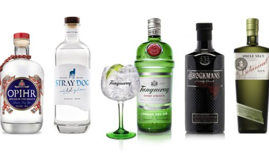 11 GINS FOR A KILLER GIN & TONIC