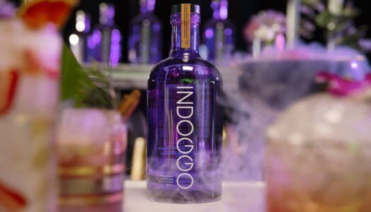 Snoop Dogg Challenges Bartendersto a Remix on GIN