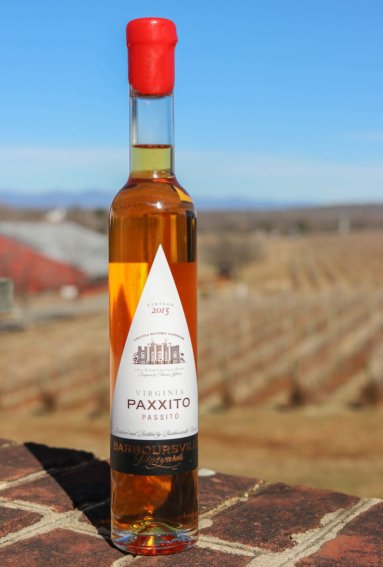 Paxxito bottle with vineyard background