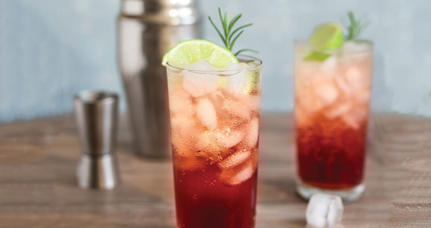 Sloe Gin Fizz, featured image