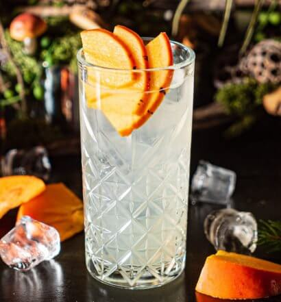 Cocktail with Persimmon garnish, featured image