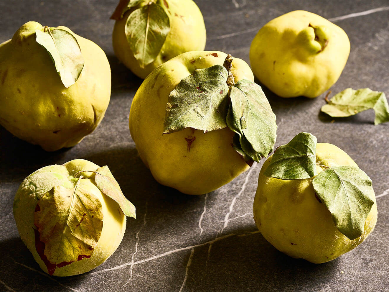 Fresh Quince by Judy Doherty